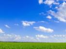 梦到平原预兆着什么,少女梦到平原到底好不好 自然,平原,大草原