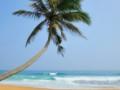 梦到海滩预兆着什么,梦到金色海滩到底好不好 自然,海滩,金色海滩