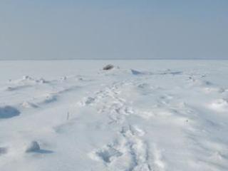 梦到路面结冰预示着什么现象? 自然,路面,结冰