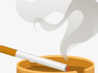 玉溪庄园烟适合什么人群抽? 香烟排行榜,玉溪