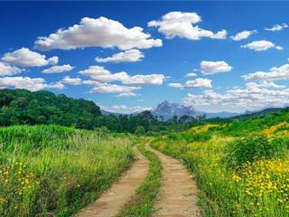 在梦中小心翼翼地寻找道路预兆什么,梦到在乡间路上开车好不好? 自然,乡间小路,开车