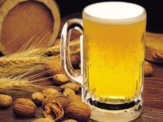 空腹喝啤酒应该注意什么? 名酒资讯,空腹,喝啤酒
