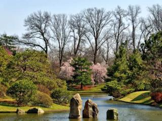 女性梦到公园里的秋千预兆什么,梦到花园里树木繁茂好不好? 自然,公园,女人