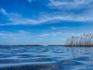 做梦梦到自己浮在水面上,这个梦有哪些现实含义 自然,水