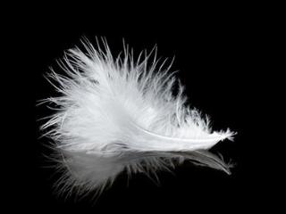 晚上做梦可是梦没有颜色,是黑白色这是什么意思 梦的百科,梦到黑白梦