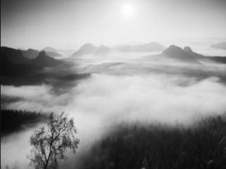 梦到雾渐渐散去预兆着什么,梦到雾渐渐散去到底好不好 自然,雾,雾渐渐散去,梦到雾渐渐散去预兆着什么,梦到雾渐渐散去到底好不好