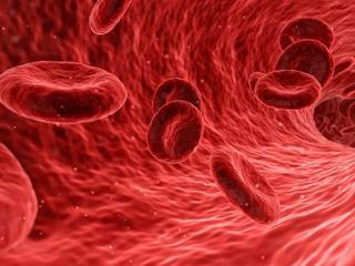 梦见血是什么意思?梦见血是什么征兆吗? 身体,梦见血,梦到自己流血