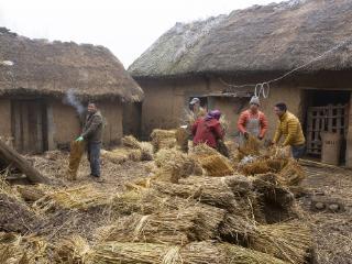 梦想一家人住在草房里预兆什么,梦想建造一间草房好不好? 建筑,草屋,梦想建造一间草房