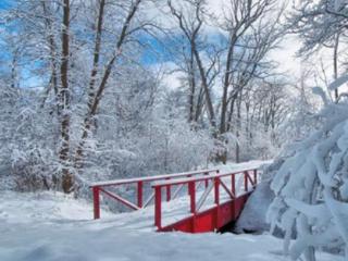 现在是夏天,我为什么会梦到下雪了,这是什么意思? 梦的解析,下雪,梦到下雪