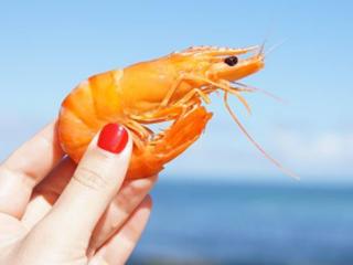 孕妇梦到自己在吃美味的煮虾预示着什么? 动物,虾,梦到吃虾