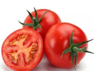 梦见西红柿熟了是什么意思?梦见西红柿熟了是什么预兆? 植物,梦见西红柿,单身的人梦到番茄成熟