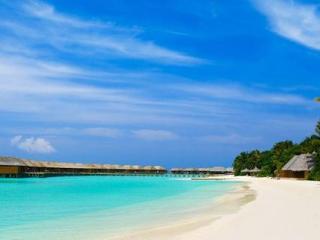 梦到自己在海岸边,这个梦有哪些独特的意义 自然,梦到海岸,梦到海边
