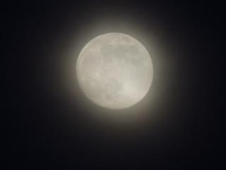 梦到圆月预兆着什么,梦到圆月到底好不好 自然,圆月,梦到圆月在半空闪耀