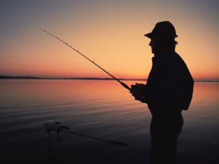 我为什么会梦到我自己在钓鱼,我从来没有这个习惯。 动物,鱼,梦到钓鱼