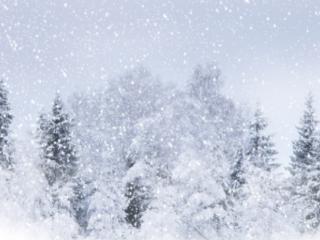 做梦梦到下雪是什么预兆,梦到下雪是好是坏 梦的百科,下雪,梦到下雪