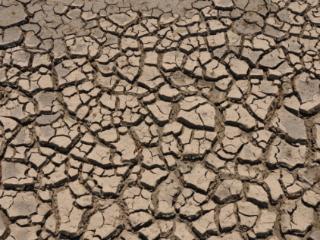 梦到干旱预兆着什么,梦到干旱到底好不好 自然,干旱,梦到到了旱季