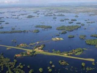 梦见沼泽、湿地是什么意思?梦见沼泽、湿地是什么预兆? 自然,梦见沼泽,梦见自己身陷沼泽