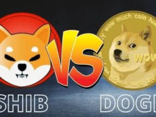狗狗币和SHIB的真正价值是什么、新手币圈一级市场何去何从 狗狗币和S