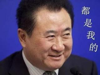 王思聪的儿媳,王健林心目中对于儿媳妇的人选是哪位? 王健林