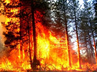 梦见着火救火的含义是什么?梦见着火救火是什么意思? 自然,梦见着火救火,梦见着火被自己扑灭