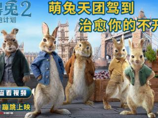《比得兔2:逃跑计划》发布角色预告,毛绒绒的动物太可爱 电影,比得兔2:逃跑计划,比得兔2电影,比得兔2定档