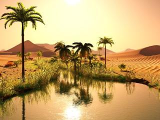 梦到绿洲是为什么?梦到绿洲的心理解析是怎样的? 自然,梦到绿洲的梦,梦到绿洲的梦分析