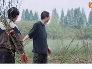 《向往的生活》李雪琴与杨紫在蘑菇屋中的待遇简直是天壤之别 向往的生活