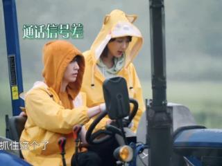 张艺兴和杨紫在《向往的生活》中频频出错事,张艺兴慌了神 张艺兴