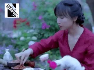 李子柒自制月饼,一盒月饼300块钱,粉丝看到馅料时无人喊贵 月饼