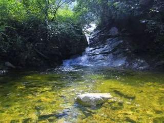 梦到购买山泉水预示什么?梦到山泉水,矿泉水的梦是什么意思? 自然,梦到山泉水的相关梦,梦到山泉水梦的分析