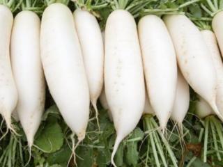 妇女梦见吃萝卜在生活中会发生什么事情?好不好? 植物,梦到许多蔬菜,妇女梦见吃萝卜