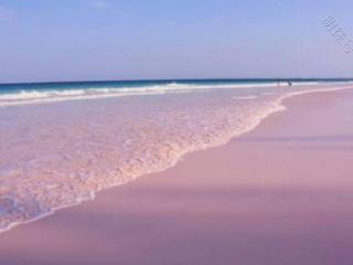 梦见了大海有些什么预示?为什么会梦见大海呢?做这种梦是好是坏 自然,梦见大海,梦见大海的预兆