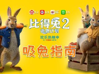 """电影《比得兔2:逃跑计划》发布""""吸兔指南""""特辑解析 比得兔2:逃跑计划"""