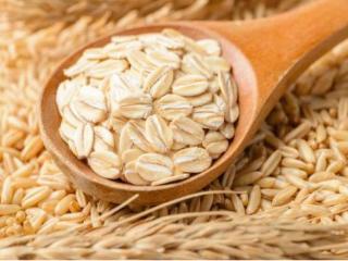 梦到自己在吃燕麦,这个梦境预示着好的事情要发生? 植物,梦到燕麦,梦到燕麦的含义