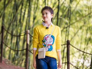 如何看待《妻子的浪漫旅行》第五季的刘涛? 刘涛