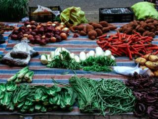 梦到奶奶卖菜的含义是什么?梦见卖菜是什么征兆? 活动,梦见卖菜,游客梦见卖菜