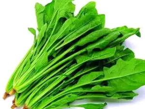 晚上睡觉的时候梦见菠菜财运好不好?梦见菠菜象征什么? 植物,菠菜,梦见菠菜是什么意思