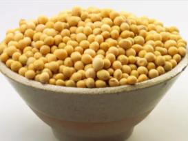 睡觉做梦梦见了黄豆在现实中有什么预兆?梦见黄豆代表什么? 植物,黄豆,梦见黄豆是什么意思