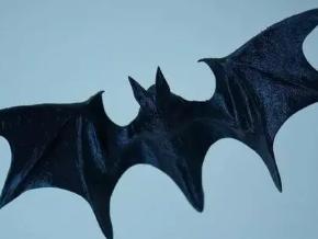 梦到黑蝙蝠是什么意思?梦到蝙蝠飞进洞穴什么意思 动物,梦到黑蝙蝠,梦到黑蝙蝠是什么意思
