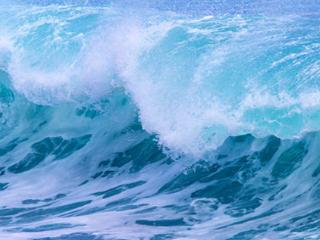 梦见海啸的含义是什么?梦见海啸却平安无事意味着什么? 自然,梦见海啸,商人梦见海啸