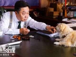 宠物电影《狗果定理》正式上映,你去看了吗?  电影,狗果定理,狗果定理演员表,狗果定理剧情介绍