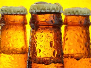 啤酒有什么品种?啤酒品种推荐 名酒资讯,啤酒有什么品种,啤酒品种推荐