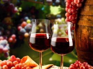 进口红酒就一定贵?平价的进口红酒有哪些 名酒资讯,红酒,进口红酒