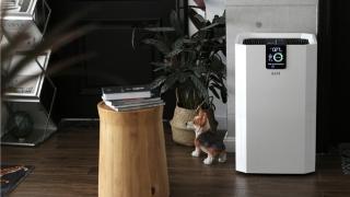 健康家電產品需求持續上升,專業空氣凈化器品牌IAM熱銷
