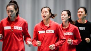 确认!江苏女排全运会主力阵容曝光,首发7人全是新老国手