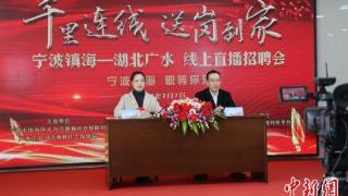 浙鄂两地千里连线 携手发出2700余个岗位稳就业