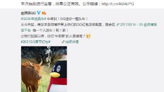 腾讯QQ忙坏了 一整头牛就是送不出去 网友神评