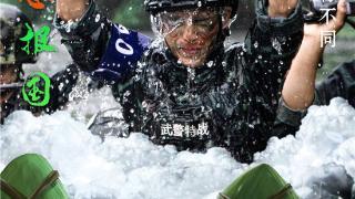 """海报丨端午节,来看军人与""""粽""""不同的样子!"""